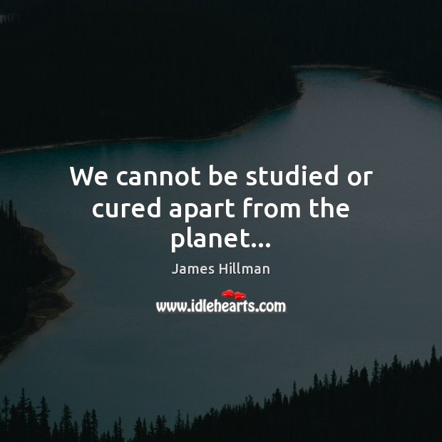 We cannot be studied or cured apart from the planet… James Hillman Picture Quote