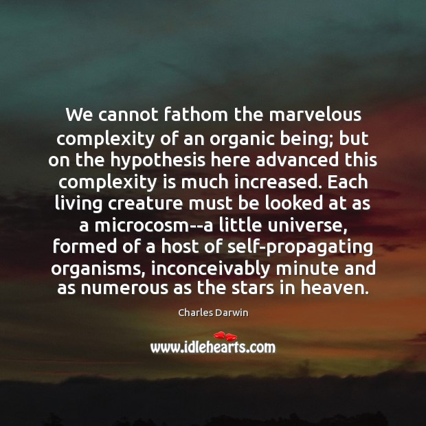 We cannot fathom the marvelous complexity of an organic being; but on Charles Darwin Picture Quote