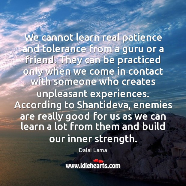 Image, We cannot learn real patience and tolerance from a guru or a