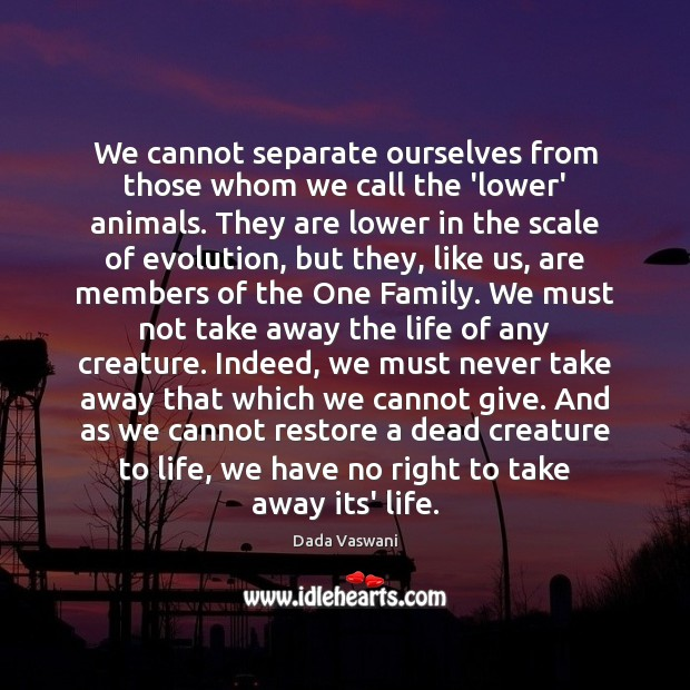 We cannot separate ourselves from those whom we call the 'lower' animals. Image
