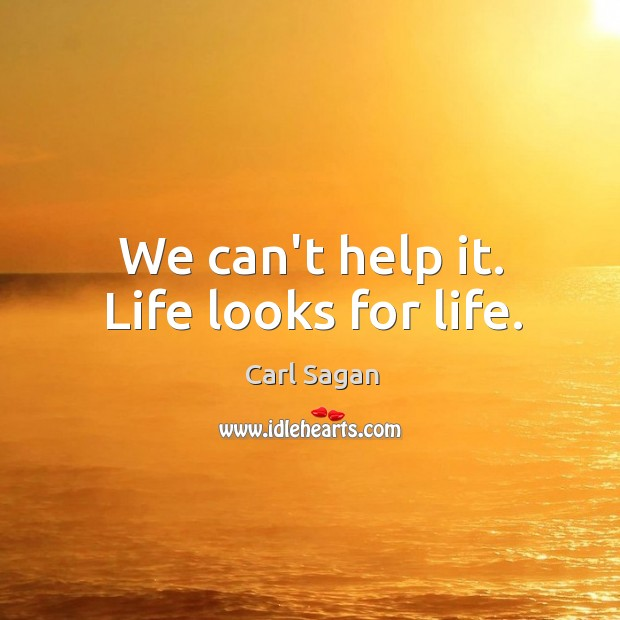 Image, We can't help it. Life looks for life.
