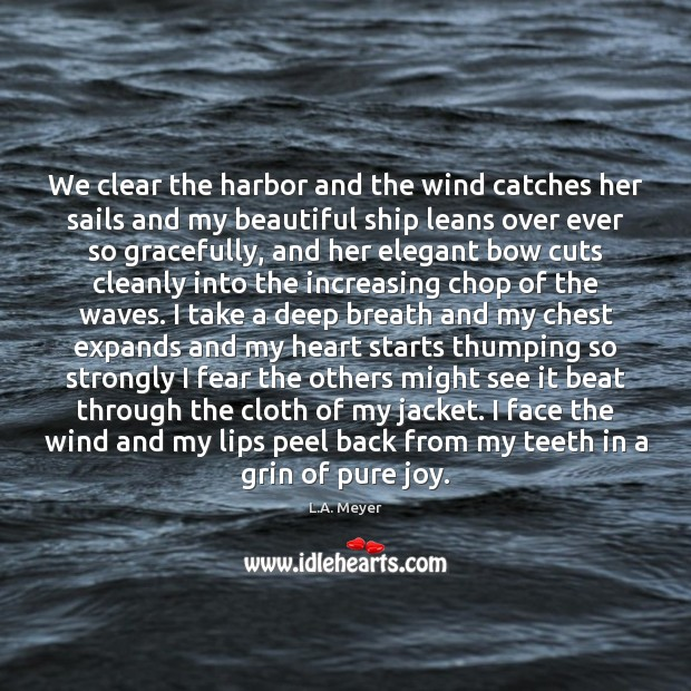 We clear the harbor and the wind catches her sails and my Image