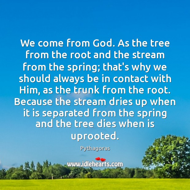 Image, We come from God. As the tree from the root and the