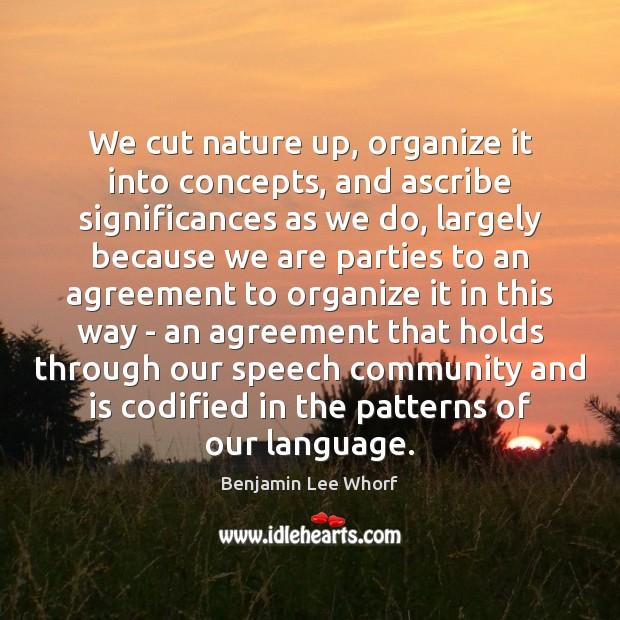 Image, We cut nature up, organize it into concepts, and ascribe significances as