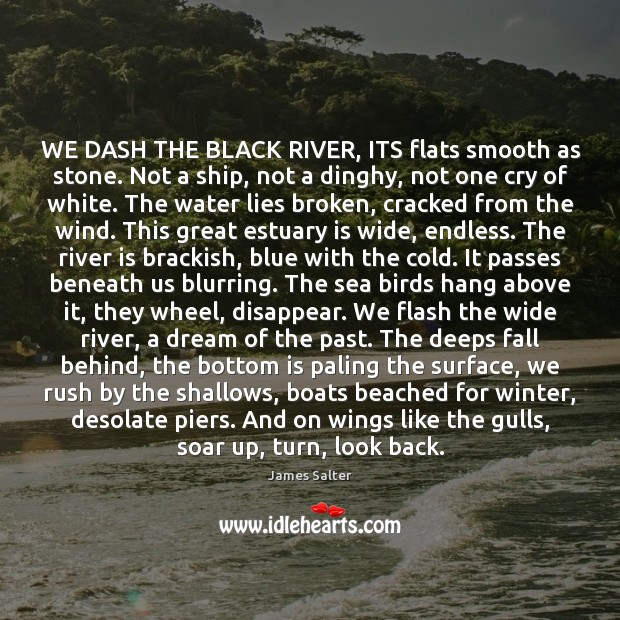 WE DASH THE BLACK RIVER, ITS flats smooth as stone. Not a James Salter Picture Quote