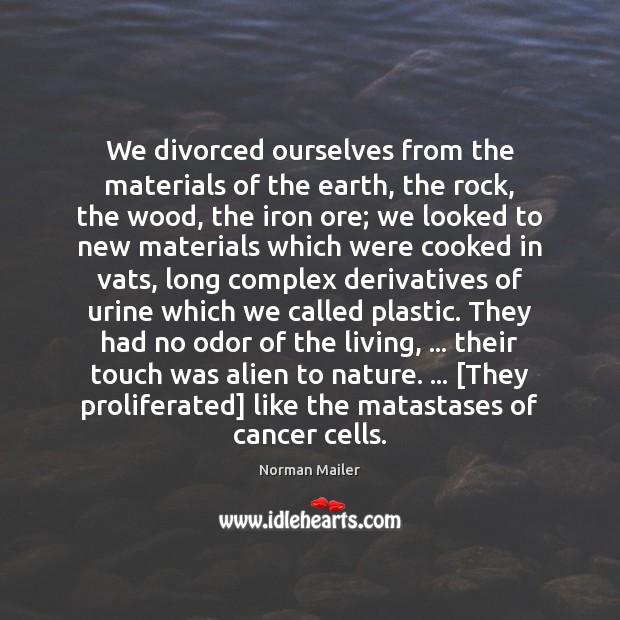 We divorced ourselves from the materials of the earth, the rock, the Image