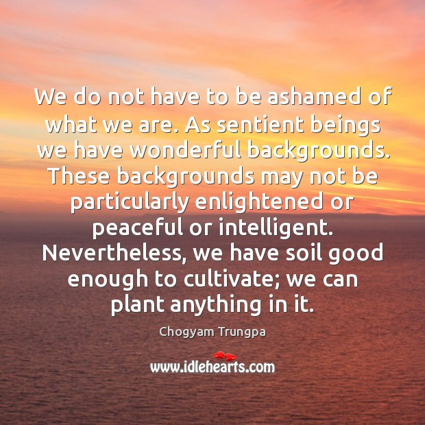 We do not have to be ashamed of what we are. As Image