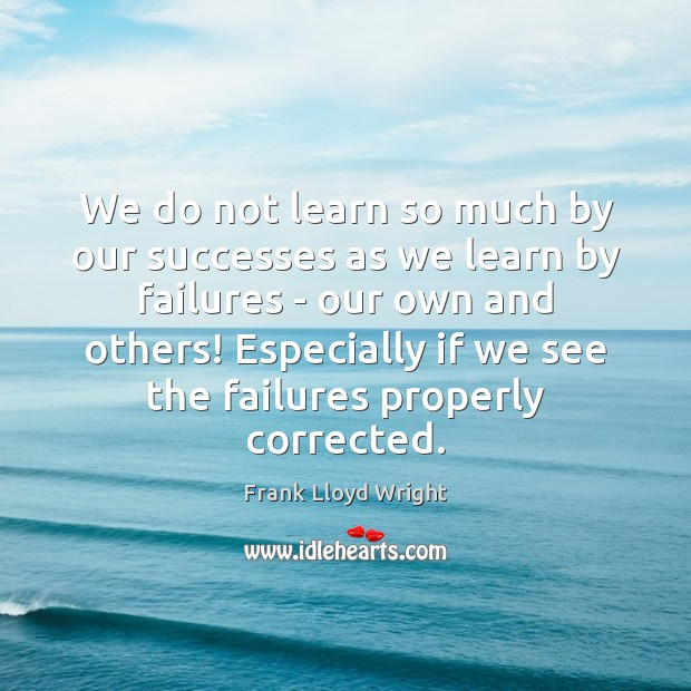 We do not learn so much by our successes as we learn Frank Lloyd Wright Picture Quote