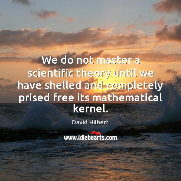 We do not master a scientific theory until we have shelled and David Hilbert Picture Quote