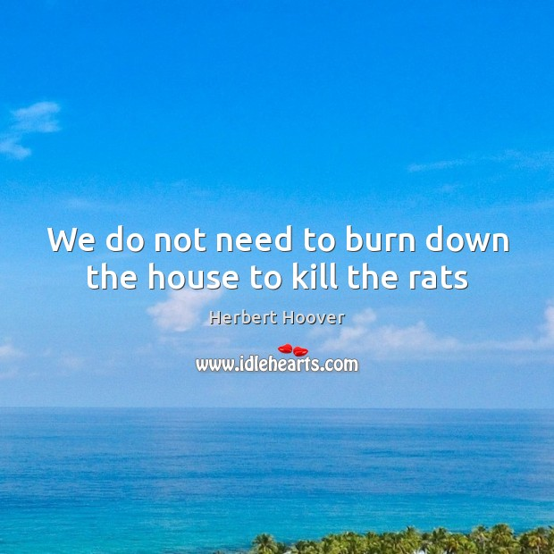 We do not need to burn down the house to kill the rats Image