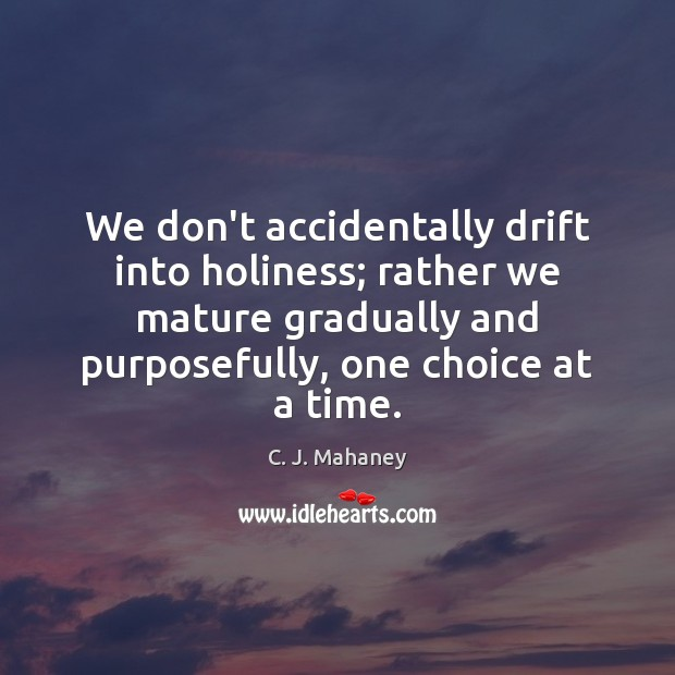 Image, We don't accidentally drift into holiness; rather we mature gradually and purposefully,