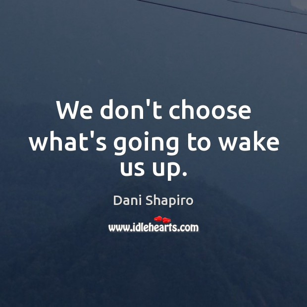 We don't choose what's going to wake us up. Dani Shapiro Picture Quote