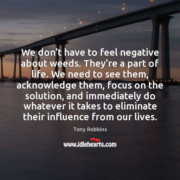 Image, We don't have to feel negative about weeds. They're a part of
