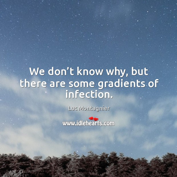 We don't know why, but there are some gradients of infection. Luc Montagnier Picture Quote
