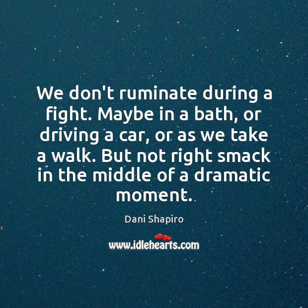 We don't ruminate during a fight. Maybe in a bath, or driving Dani Shapiro Picture Quote