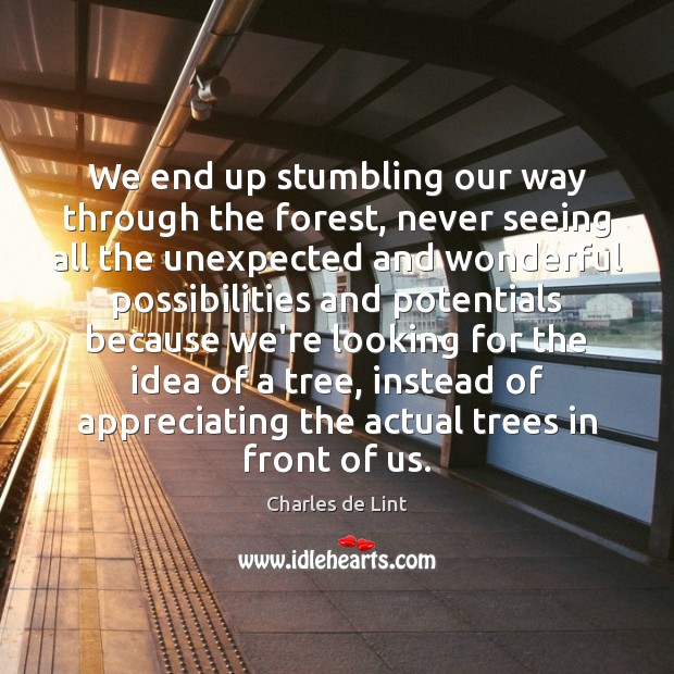 Image, We end up stumbling our way through the forest, never seeing all