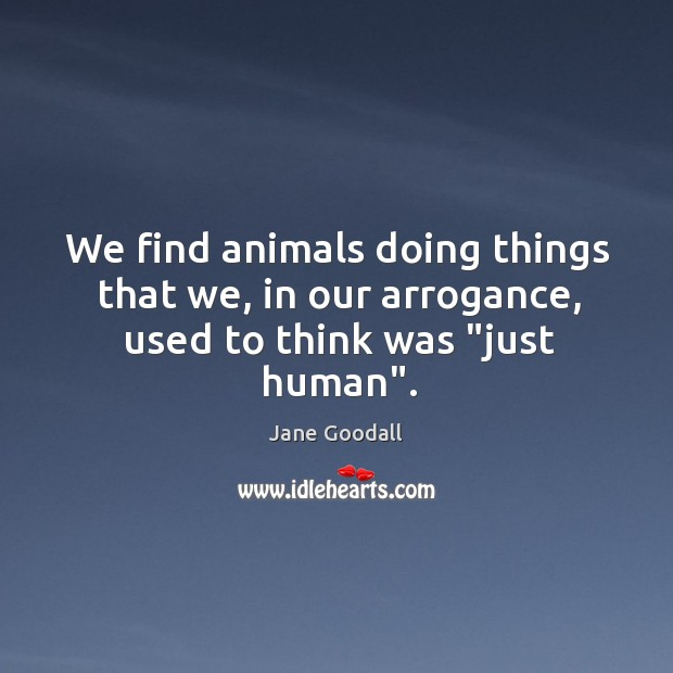 "Image, We find animals doing things that we, in our arrogance, used to think was ""just human""."