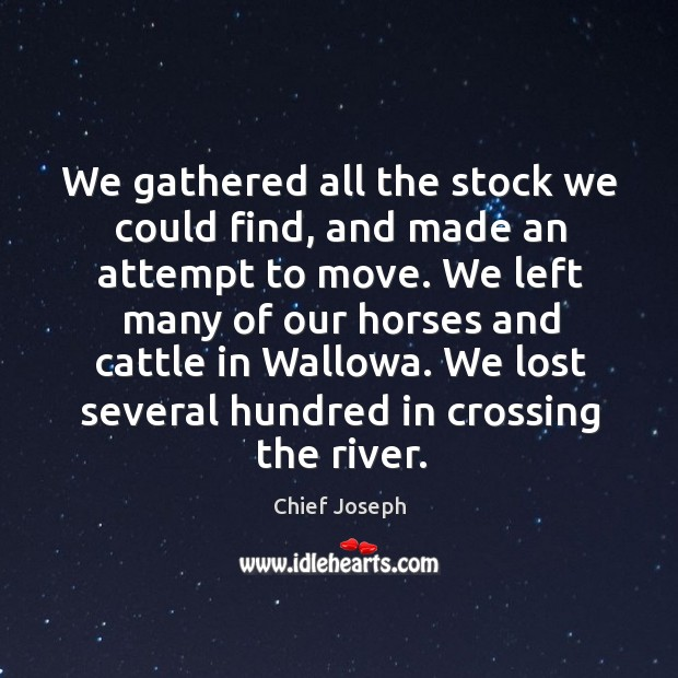 We gathered all the stock we could find, and made an attempt to move. Chief Joseph Picture Quote