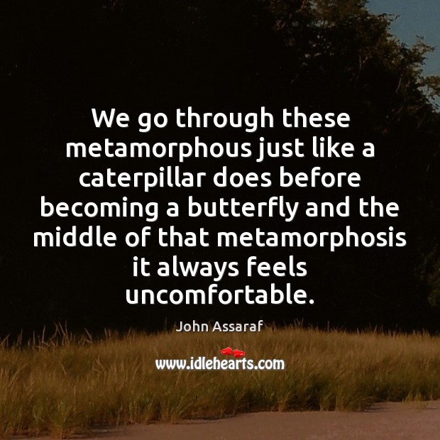 We go through these metamorphous just like a caterpillar does before becoming John Assaraf Picture Quote