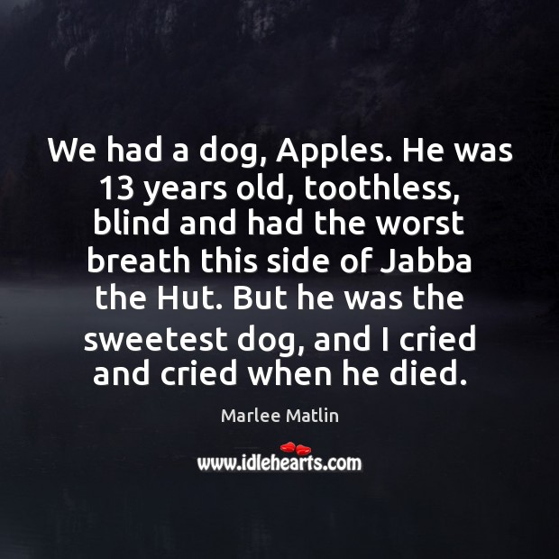 We had a dog, Apples. He was 13 years old, toothless, blind and Marlee Matlin Picture Quote
