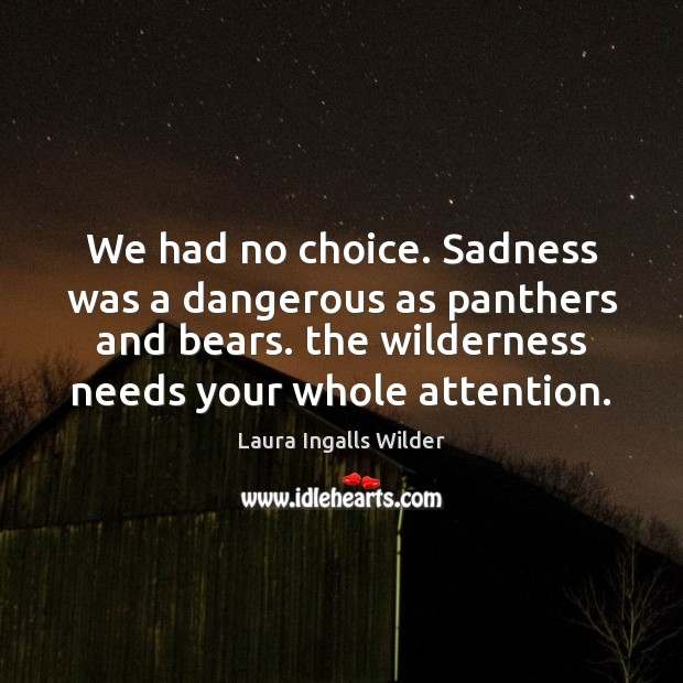 Image, We had no choice. Sadness was a dangerous as panthers and bears.