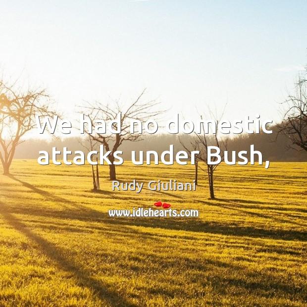 We had no domestic attacks under Bush, Image