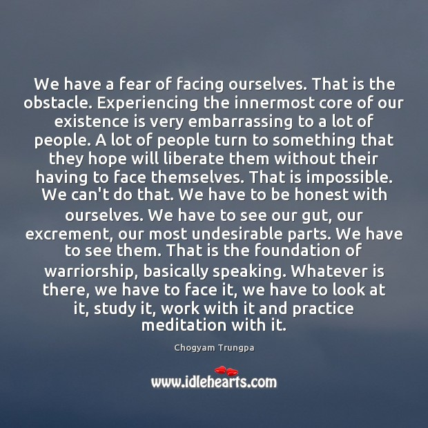 Image, We have a fear of facing ourselves. That is the obstacle. Experiencing