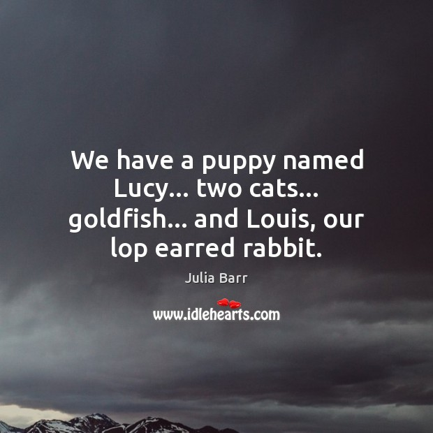 We have a puppy named Lucy… two cats… goldfish… and Louis, our lop earred rabbit. Image