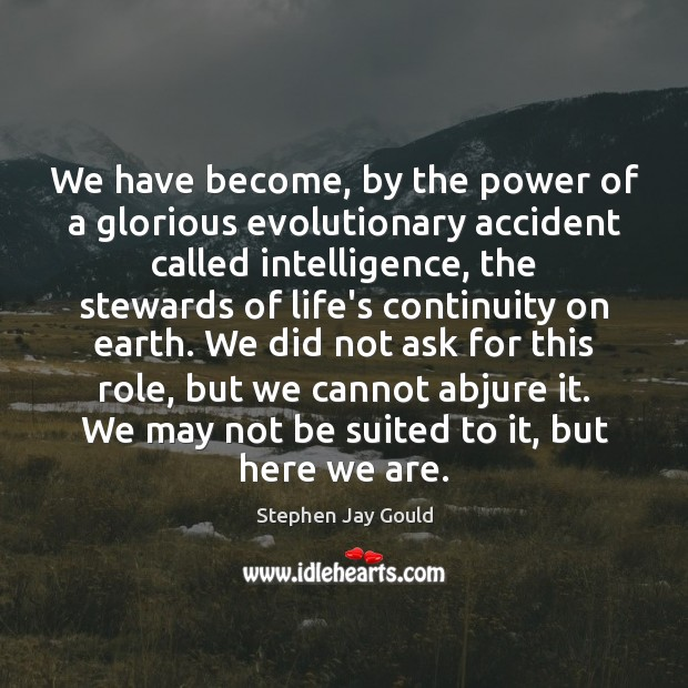 We have become, by the power of a glorious evolutionary accident called Stephen Jay Gould Picture Quote