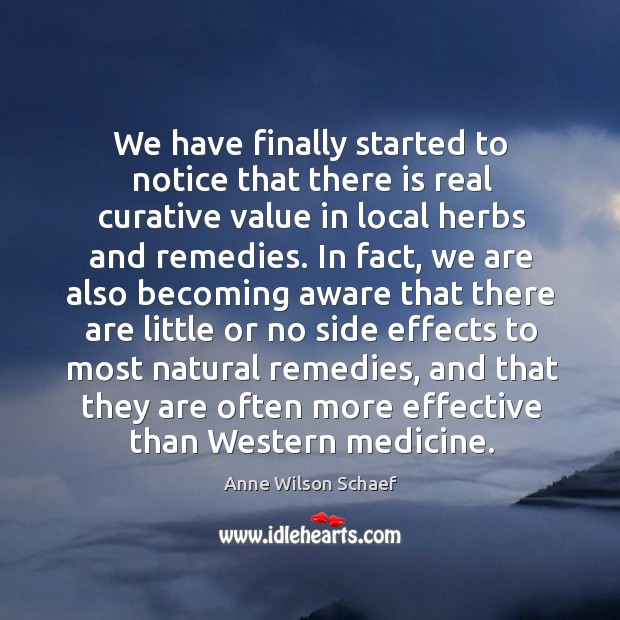 Image, We have finally started to notice that there is real curative value in local herbs and remedies.