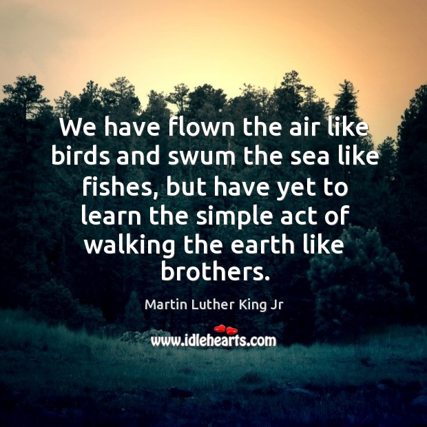 We have flown the air like birds and swum the sea like Image