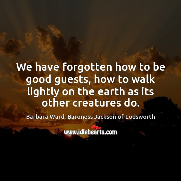 Image, We have forgotten how to be good guests, how to walk lightly