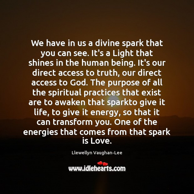 We have in us a divine spark that you can see. It's Llewellyn Vaughan-Lee Picture Quote