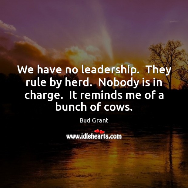 Image, We have no leadership.  They rule by herd.  Nobody is in charge.