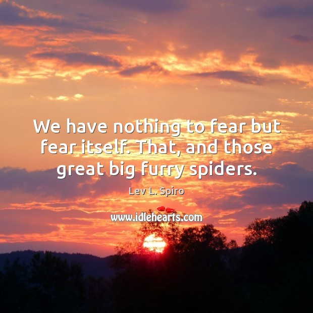 We have nothing to fear but fear itself. That, and those great big furry spiders. Image