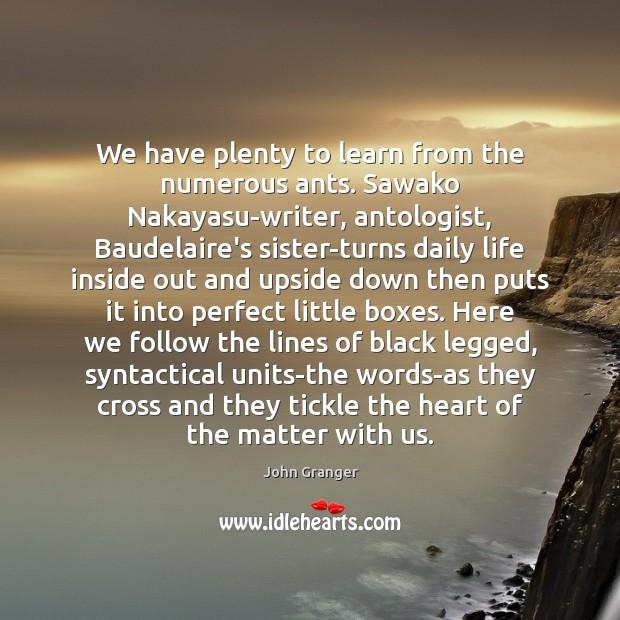We have plenty to learn from the numerous ants. Sawako Nakayasu-writer, antologist, Image