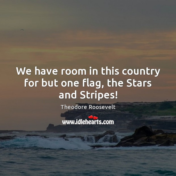 Image, We have room in this country for but one flag, the Stars and Stripes!
