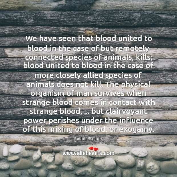 We have seen that blood united to blood in the case of Rudolf Steiner Picture Quote