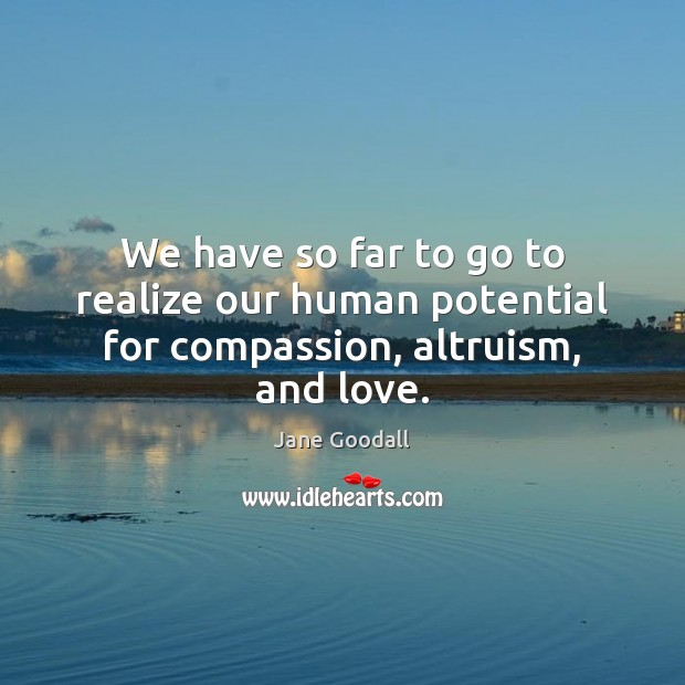 We have so far to go to realize our human potential for compassion, altruism, and love. Jane Goodall Picture Quote
