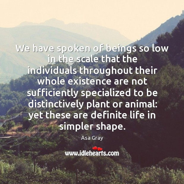 We have spoken of beings so low in the scale that the individuals throughout their whole Image