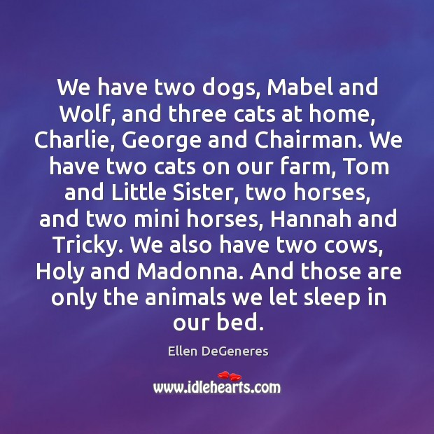 Image, We have two dogs, Mabel and Wolf, and three cats at home,