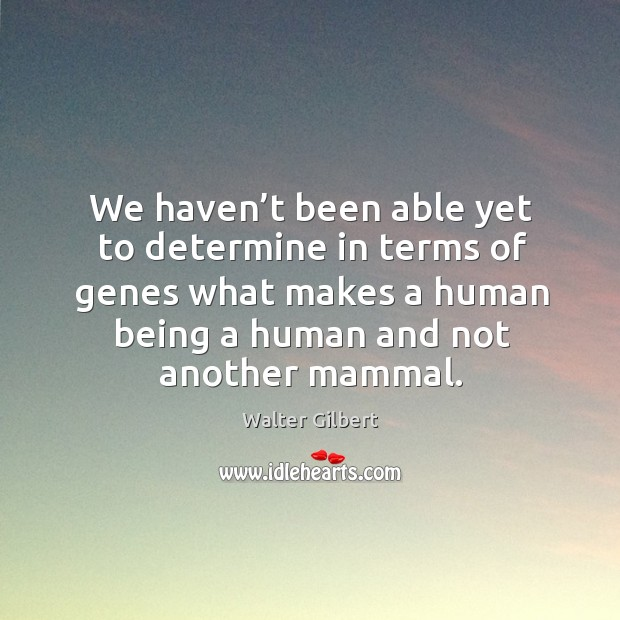 We haven't been able yet to determine in terms of genes what makes a human being Image