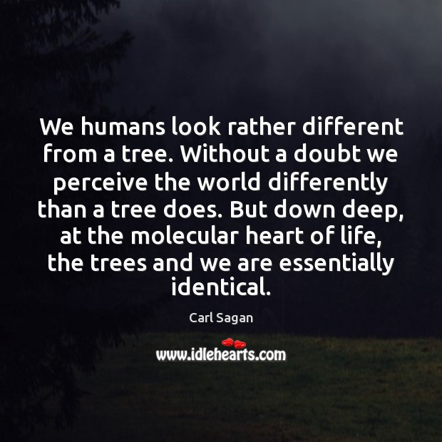 Image about We humans look rather different from a tree. Without a doubt we