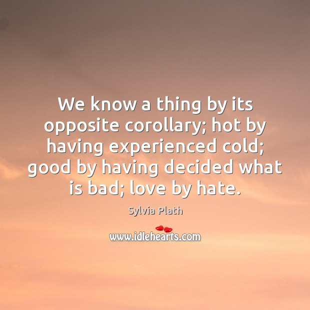 Image, We know a thing by its opposite corollary; hot by having experienced
