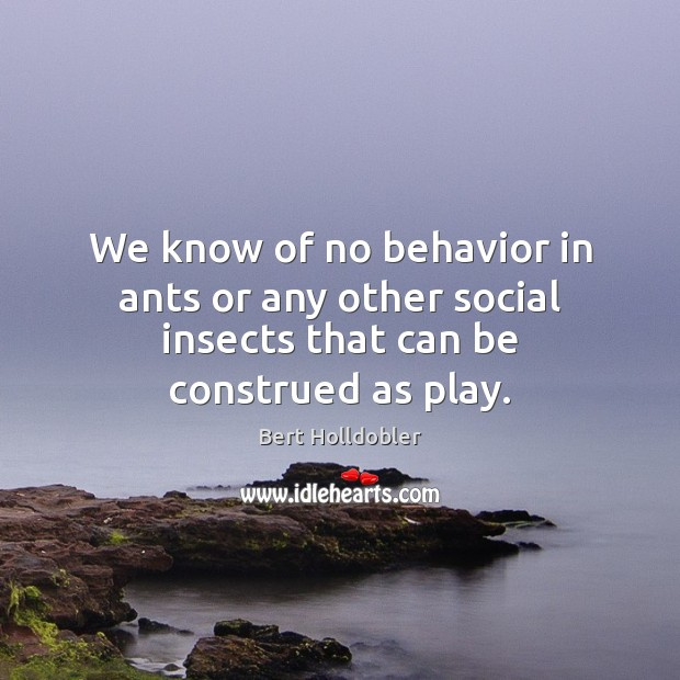 Image, We know of no behavior in ants or any other social insects that can be construed as play.