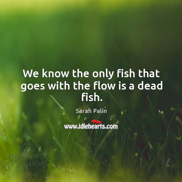 We know the only fish that goes with the flow is a dead fish. Image