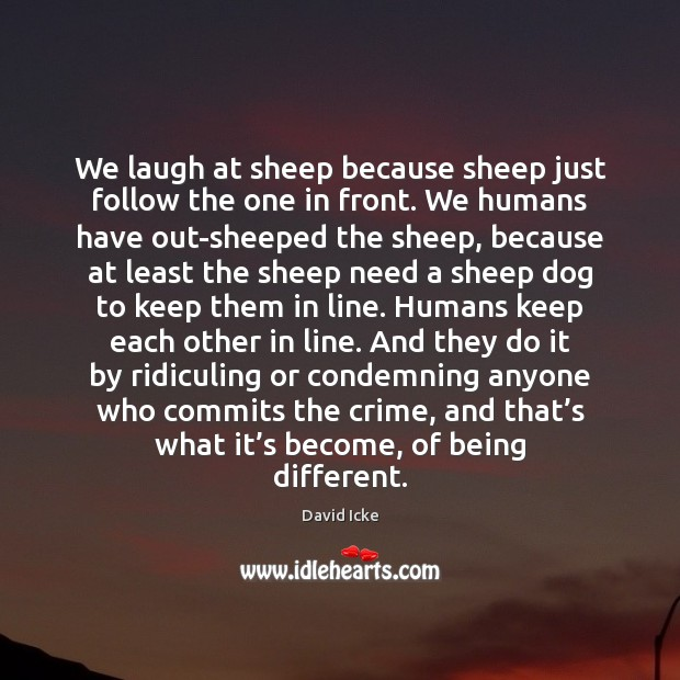 We laugh at sheep because sheep just follow the one in front. Image