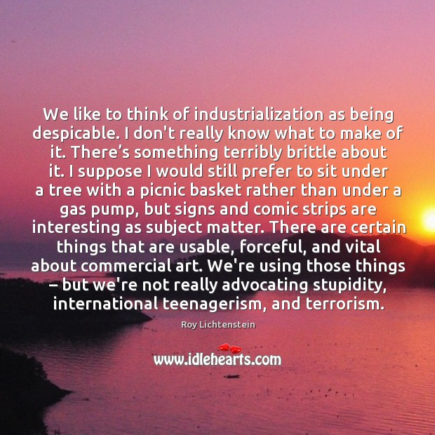 We like to think of industrialization as being despicable. I don't really Roy Lichtenstein Picture Quote