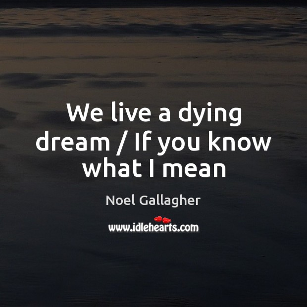 We live a dying dream / If you know what I mean Noel Gallagher Picture Quote