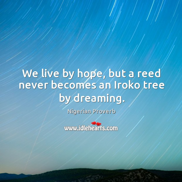 Image, We live by hope, but a reed never becomes an iroko tree by dreaming.